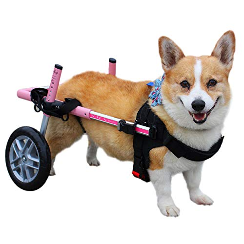 Walkin' Wheels Corgi Dog Wheelchair - for Small Dogs 18-40+ Pounds - Veterinarian Approved - Dog Wheelchair for Back Legs
