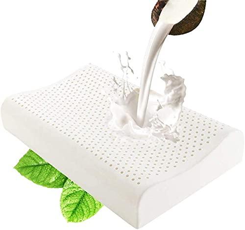 Almohada Viscoelástica - Tejido Ecológico Aloe Vera, núcleo de Visco Puro 100% Natural - Doble Funda con Cremallera. Adaptativa Termoregulada. -ASD