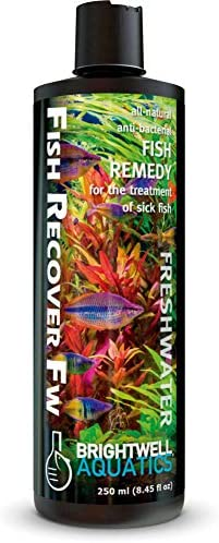 Brightwell Aquatics Fish Recover FW - Natural Botanical Remedy for Treatment of Infections in Freshwater Fish