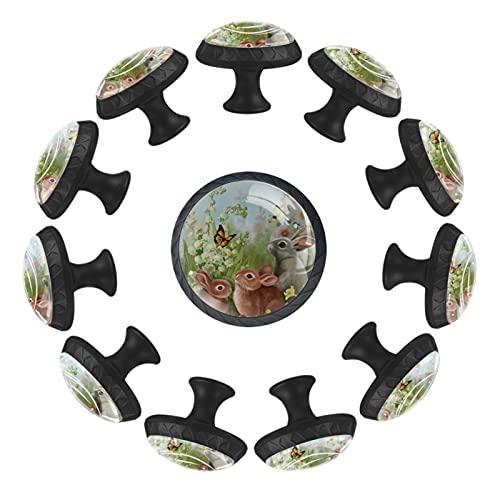 Pomos para cajones de tocador Pomos de puerta Pomos de armario Campana de Conejo Canterbury Bells Armario de bricolaje, cocina, baño, armario, tiradores con tornillos, 12 piezas