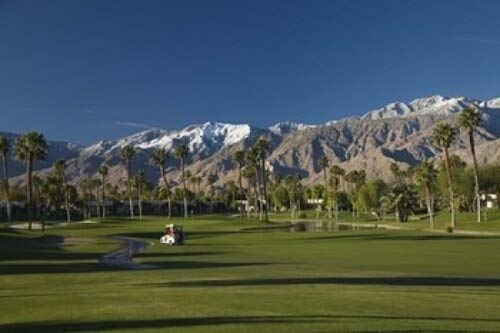 Posterazzi Trees in a Golf Course Desert Princess Country Club Palm Springs Riverside County California USA Poster Print by Panoramic Images (24 x 16) Varies