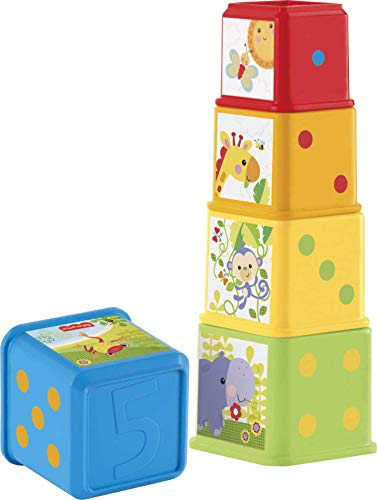 Fisher-Price Stack and Explore Blocks, Baby stacking Toy with Different...