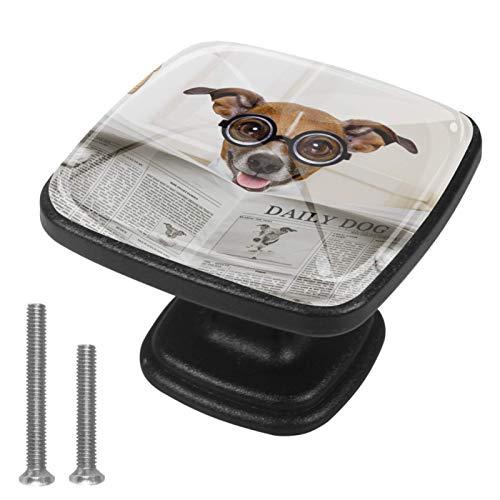 Perillas de muebles Gafas perro marrón Perilla del cajón del tocador Perillas de gabinete de cocina estéticas para juego de cocina de 4 3x2.1x2 cm
