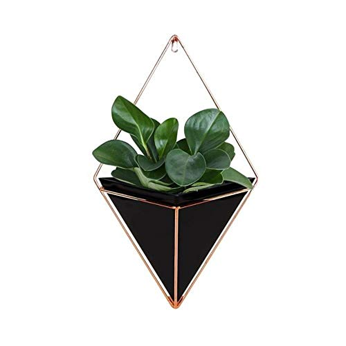 WYCYZJ Bloempot houder Geometrische hangendetuin vetplanten Plant hanger voor cactus succulente huis wanddecoraties 3 maten, zwart, L