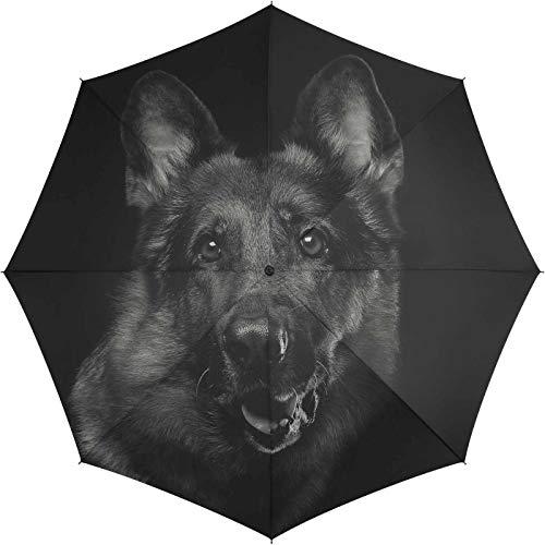 Automatik Regenschirm Stockschirm Essentials Dog mit wunderschönem Hundemotiv