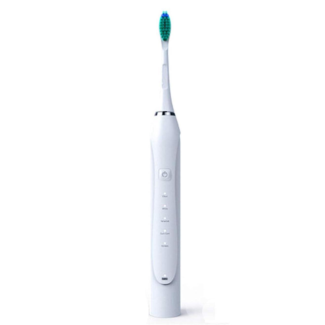 電動歯ブラシ、ソニック電動歯ブラシ誘導大人充電式振動ソフトヘア自動USB充電,白,1Pcs