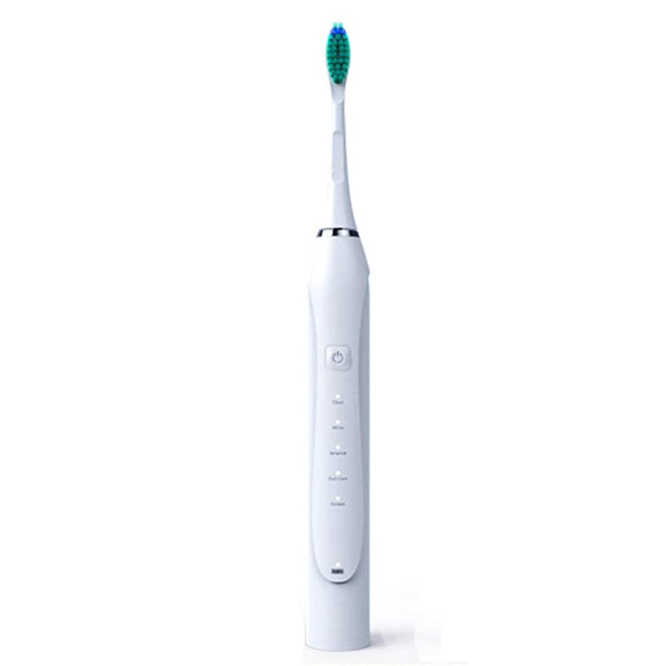 リネン誤解を招くピカソ電動歯ブラシ、ソニック電動歯ブラシ誘導大人充電式振動ソフトヘア自動USB充電,白,1Pcs