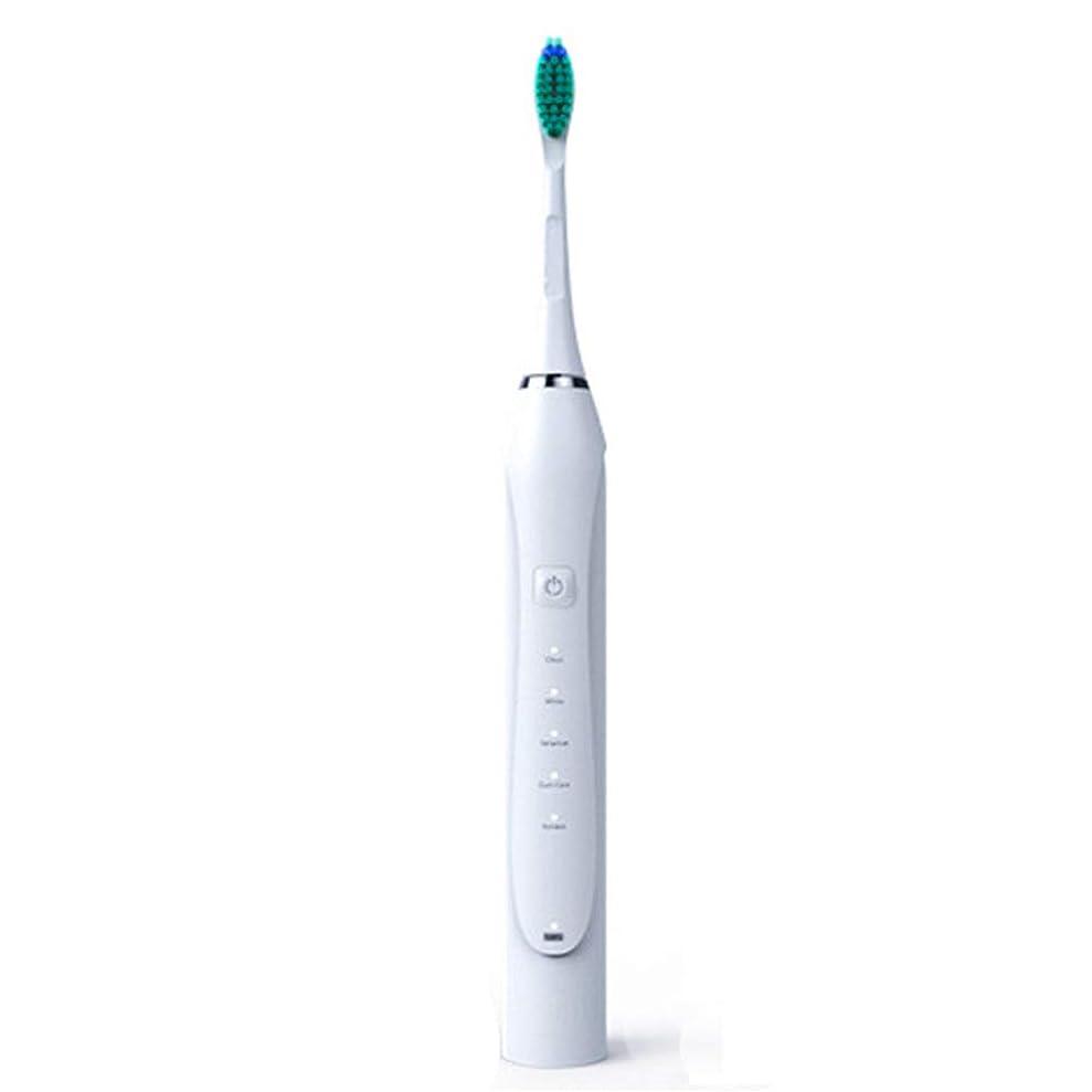 雪だるまシャワーイブ電気シリコーンの歯ブラシ、音波の電動歯ブラシの誘導の大人の再充電可能な振動柔らかい毛の自動USBの充満,白,2Pcs