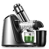 Slow Juicer, Entsafter BPA-Frei 200W mit 76MM großer Einfüllöffnung, Keramikschnecke, Zubehör für Eiscreme, Umkehrfunktion & Leiser Motor, Entsaften für Obst, Gemüse und Babynahrung, Rezept
