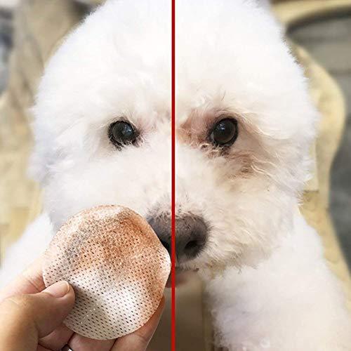 Hemore - 100 toallitas de algodón húmedo para Mascotas con Base hipoalergénica,...