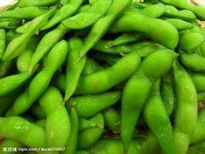 Envío libre 1 Packs De Semillas 20 Edamame, soja Semilla de Soja C032 vegetal verde