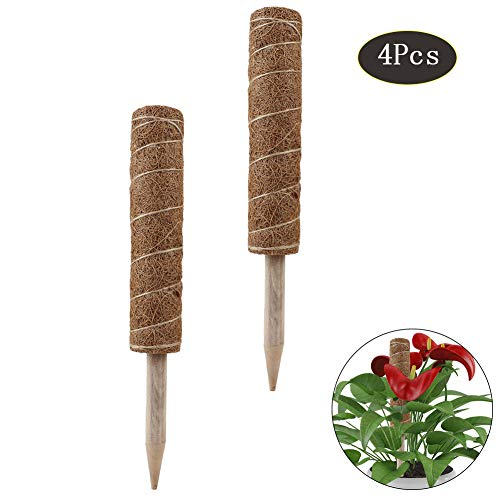 Cozyhoma Totem Stange aus Kokosfaser, Moosstab, Kokosfaser, Moos, Totem-Stangen für Pflanzen, zur Verlängerung von Pflanzen, Stäbchen, 4 Stück