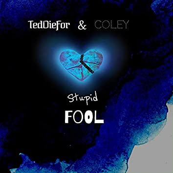 Stupid Fool (feat. Coley)