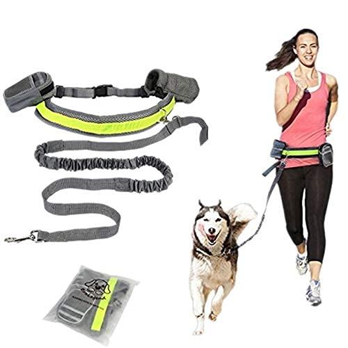 Ir a caminar, caminar, impermeable, ajustable, correr, jugar, resistente al desgaste, correa elástica para cachorros de perro sin manos, cintura acolchada ajustable, reflectante, correr, correr, cam