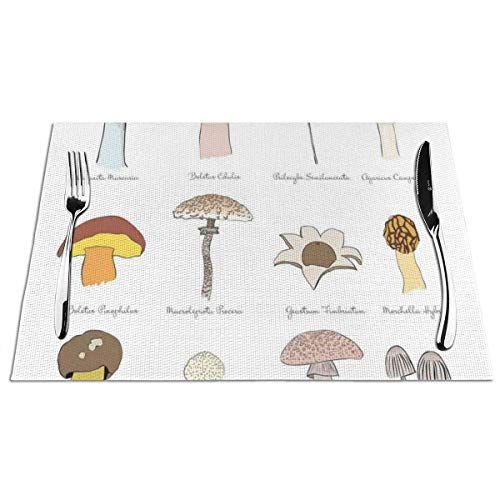 FZDB Manteles Individuales Heat-Resistant Stain Resistant Anti-Skid Washable PVC Table Mats,Colorful Fungi Pattern ber Boletus Sketch Style Plants Autumn Illustration 4 PCS