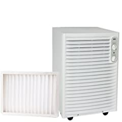 Indoor Air Dryer & Air Dehumidifier - Wood's DS36F*