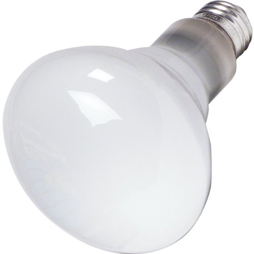 Reflector Bulb - 6