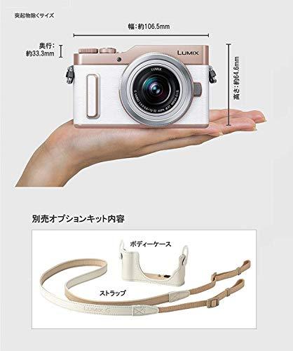Panasonic(パナソニック)『LUMIXDC-GF10WダブルレンズキットLUMIXGVARIO12-32mm+25mm/F1.7ASPH.付属』