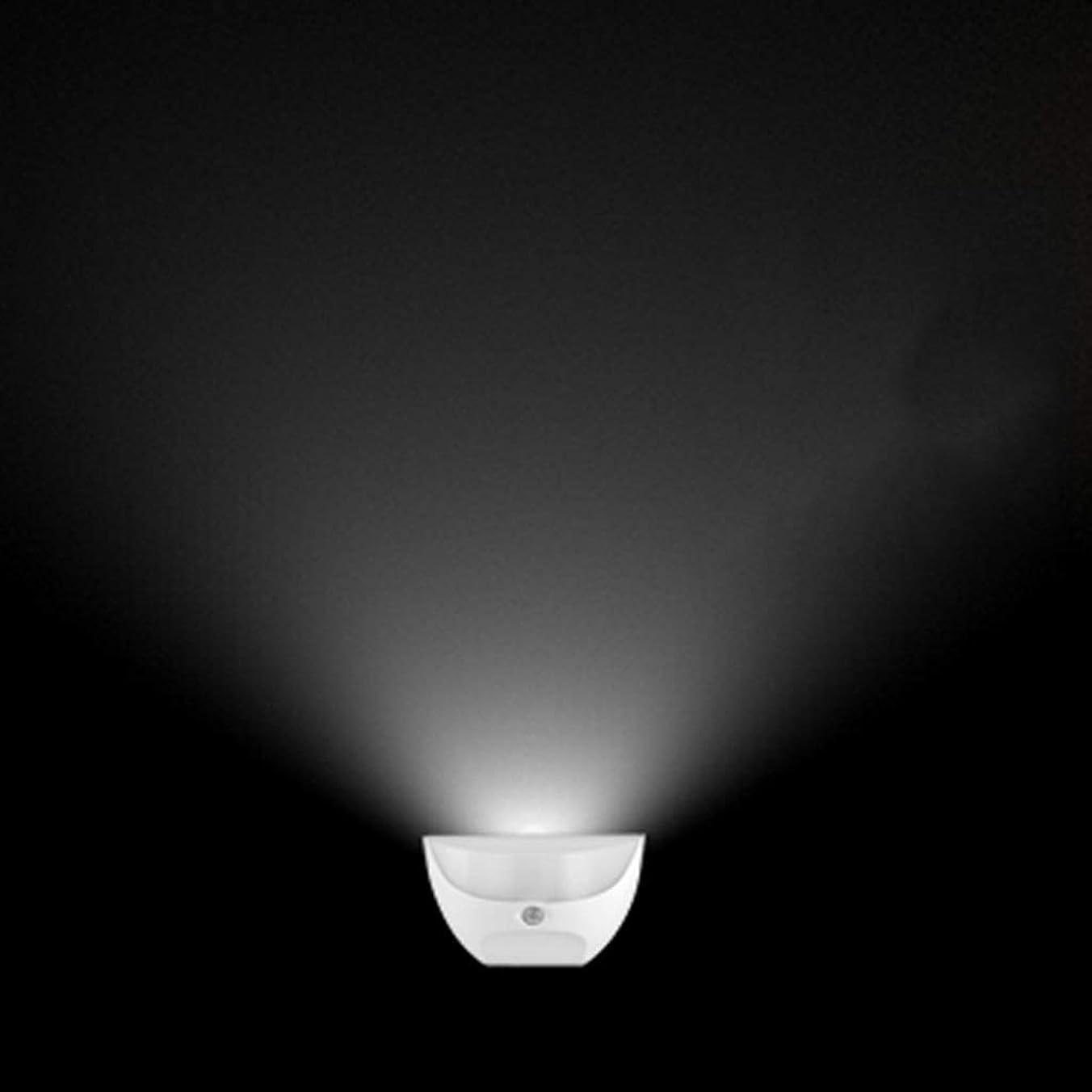 熟達消毒する政権Night light LEDナイトライトUSB充電人体誘導ランプ廊下通路コーナーランプアイプロテクション防水 XBCDP (Color : White)