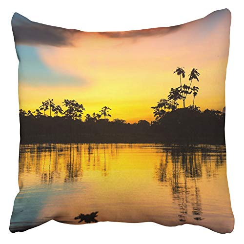"Bozh Throw Pillow Covers Cases Decorative 18x18 Inch Yellow River Colorful Sunset Deep In The Amazon Rainforest Peru Jungle Amazonas Forest Two Sides Print Pillowcase Case Cushion Cover 18"" X 18""(IN)"