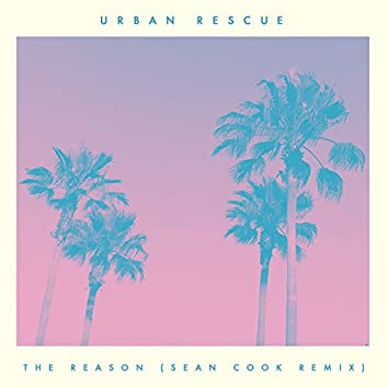 The Reason (Sean Cook Remix)