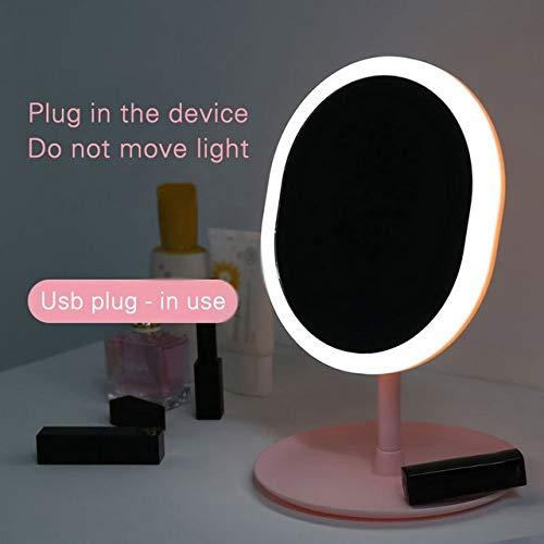 RAQ Afneembare Bewaarbasis Met Afneembare Led Spiegel Verlichte Spiegellamp Met Natuurlijke Witte Led Fluorescerende Lamp, 3 Modi Geschikt Voor Ovale USB-stekker