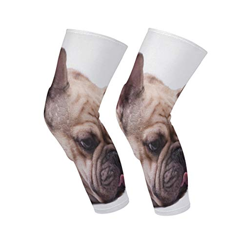 SLHFPX Knee Sleeve Brown French Bulldog Full Leg Brace Compression Long Sleeves Pads Socks for Meniscus Tear, Arthritis, Running, Workout, Basketball, Sports, Men and Women 1 Pair