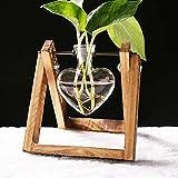 WHFY Soporte De Flores Plant Stand ExhibicióN De Macetero De Vidrio De...