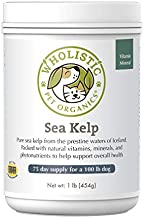 Wholistic Pet Organics Sea Kelp: Icelandic Dog Sea Kelp - Organic Kelp Powder with Iodine, Iron, Calcium and Antioxidants - Sea Kelp Supplement for Dogs Teeth, Thyroid Function, Skin and Coat - 1 Lb