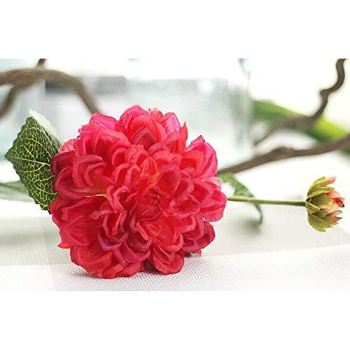 GETSO 2ST / Lots Dahlia Bonsai Erbstück Topf Dahlie-Blumen-Bonsai Anlage für Hausgarten-DIY Topfpflanze für Home Hochzeit Dekoration: Red