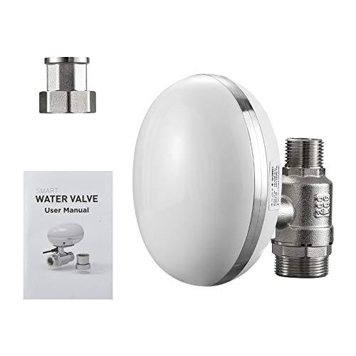 TTLIFE - Temporizador para grifo, control WiFi, control automático, aplicación de operación remota inteligente de 3/4 pulgadas, temporizador de riego IP66, dispositivo de riego impermeable