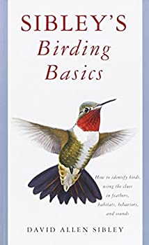 Sibley s Birding Basics  How to Identify Birds Using the Clues in Feathers Habitats Behaviors and Sounds  Sibley Guides