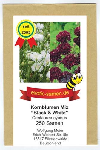 Centaurea cyanus - Bienenweide - Kornblumenmix black & white - schwarz & weiß - 250 Samen
