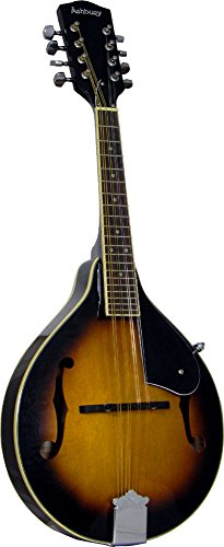 Ashbury AM-10 Mandoline Sunburst