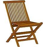 Bare Decor BARE-DC1021 Vega Outdoor Folding Chair, Set of 2, Teak