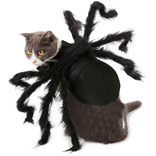 Iris Sprite Disfraz de Murciélago de Halloween para Gatos Halloween Gatos Disfraz de Gato Sombrero de Bruja Sombrero de Calabaza araña (Traje de araña (Traje para Gatos, Perros pequeños))