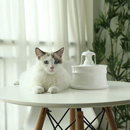 Fuente de Gato El Gato y el Perro Creativa Fuente de cerámica - Circulación automático del Animal doméstico de Agua, Bomba de Agua Ultra silencioso Portátil (Color : White, Size : Love Heart)
