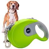 Edipets, Correa Perro Extensible / Retráctil, 3, 5 y 8 Metros, Cinta Flexible para Adiestramiento y Paseo, para Perros Pequeños, Medianos y Grandes (Verde, 5 Metros)