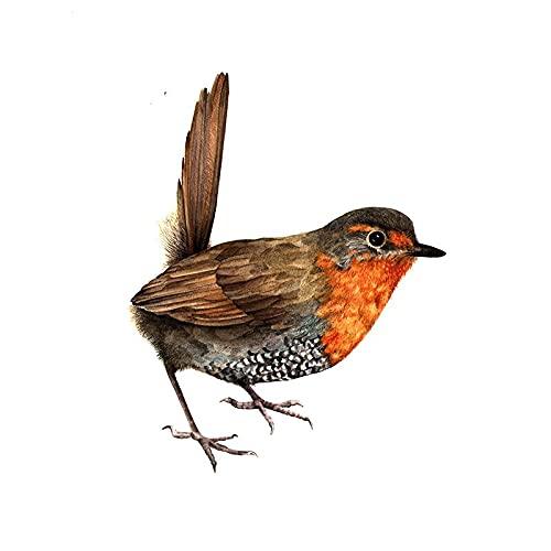 A/X 13 cm 10,5 cm para pájaros Dibujos Animados Impermeable Coche Pegatina refrigerador Aire Acondicionado calcomanía Personalidad