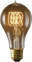 Bulbrite Incandescent A21 Medium Screw Base (E26) Light Bulb, 40 Watt, Antique