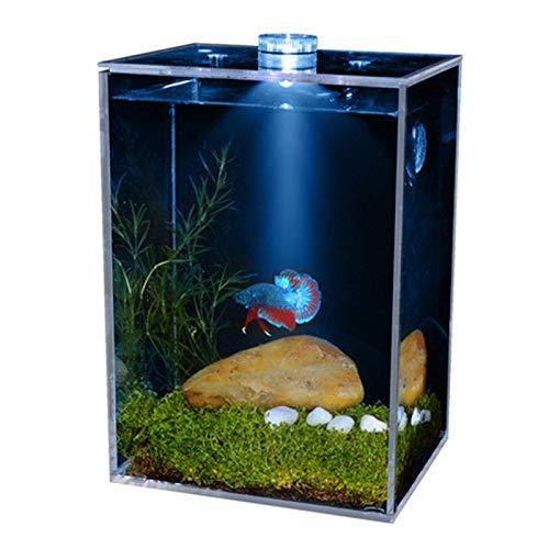 SXCYU LED Aquarium Aquarium Kleine Ultra-transparente klare Fischschalen quadratische LED-Heizung mit Landschaftsbau Imitation Wasserpflanze, Blaue Beleuchtung, M.