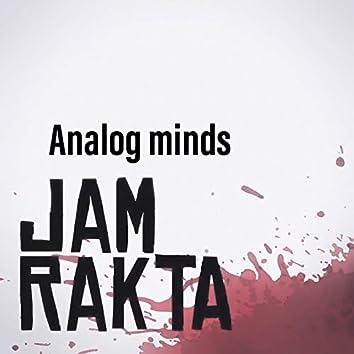 Analog Minds