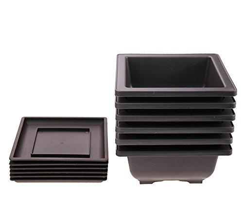 6PCS/Pack Beautiful Retro Style Plastic Square Pot /Flower Bonsai Plants Growing Pots /Maceta Cuadrada Simulational Purple Sands Pots with Tray Square 6.6'