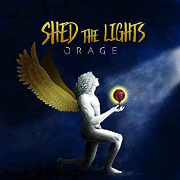 Shed the Lights