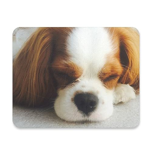 BlueViper Cavalier King Charles Dog Mouse Pad Smooth Surface Gaming Pad Thick Non-Slip Rubber Base Colorful Cute Design Art Artist Painting Unique Novelty Gift for School Office Game