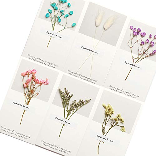 Handmade Dried Flower Thank you Card Greeting Cards Assortment - Deliver your heartfelt wishes with these pretty blank greeting cards with envelopes birthday thank you cards graduation thank you cards