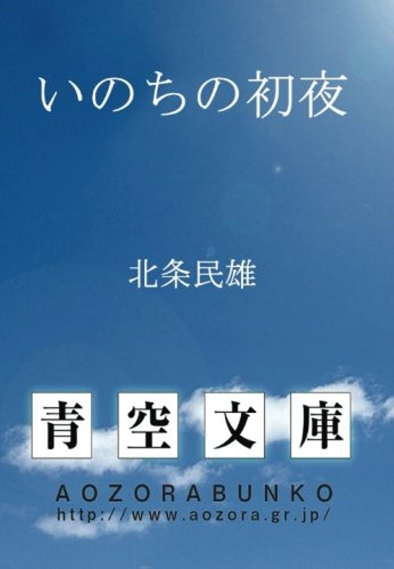 マインドフル苦気球いのちの初夜 (青空文庫POD)