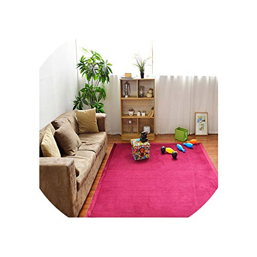 2Cm Thick Japanese Style Carpet 1002002Cm Solid Big Rugs Bedroom Non Slip Baby Crawling Mats Carpets for Living Room,No-3,190X280Cm