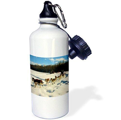 liandun Iditarod (Luge Racing pour chien en Fairbanks Sport bouteille d'eau, 21oz, blanc