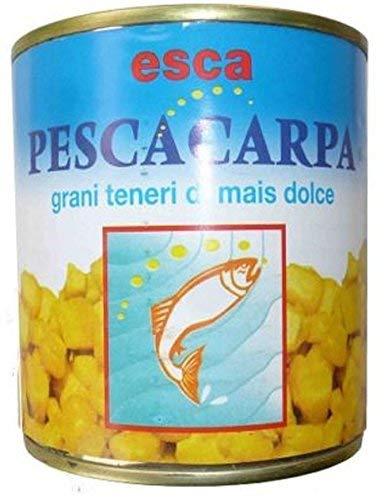 Generico Mais - Tarro para pesca de señuelo, carpa, trucha dulce natural